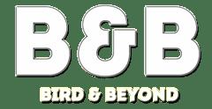 Birds Watching   Bird Feeding Live   Bird and Beyond