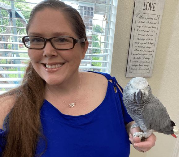 How to find a good bird sitter